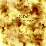 Bash -- Mixed Brush Set_10