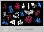 011: tiny floral + plant
