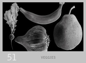 023: Fruits + Veggies by Lexana