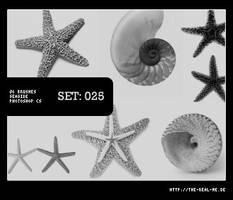 025: Seaside