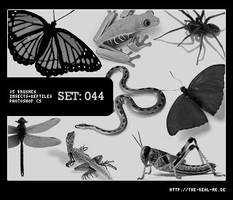 044: Insects and Reptiles by Lexana