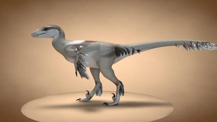 3D Troodon