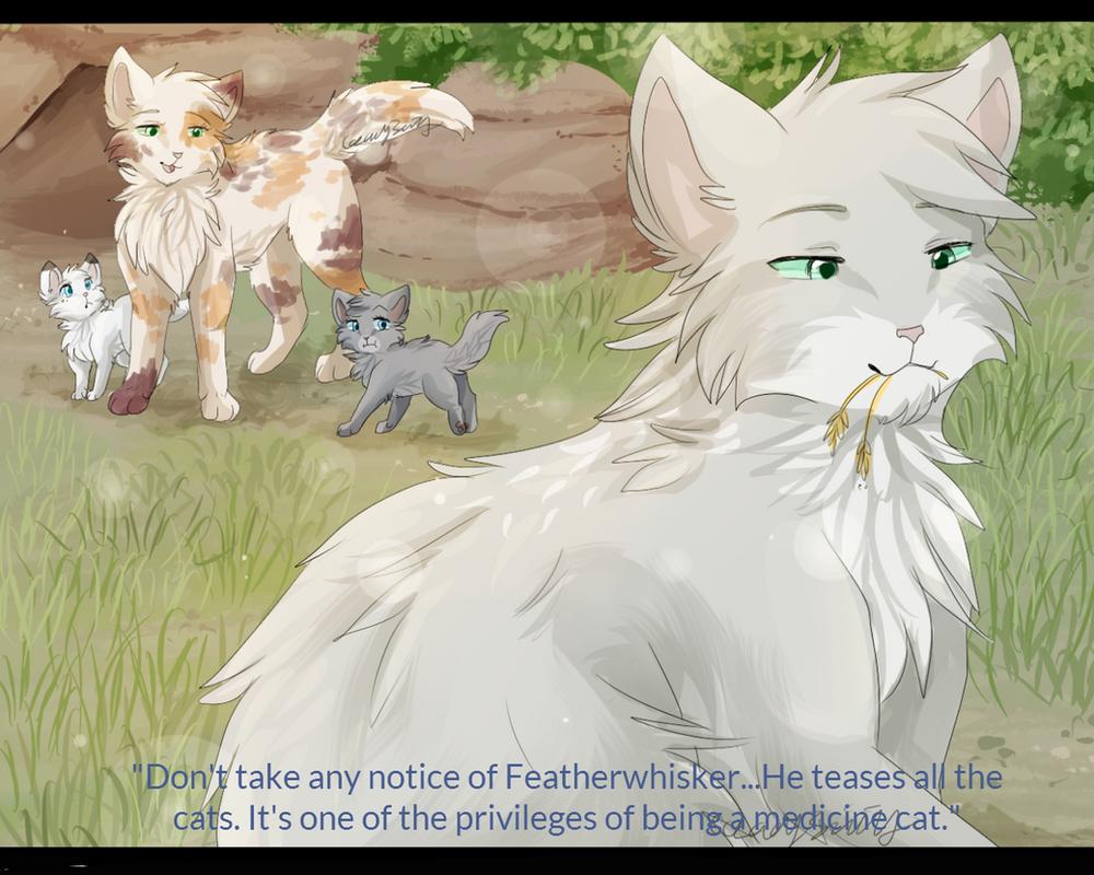 Warriors Cats Featherwhisker