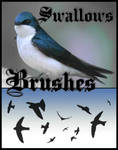 Swallows Photoshop Brushes