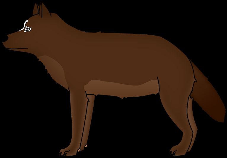 Doksuri the wolf