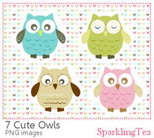 Cute Owls Clipart set
