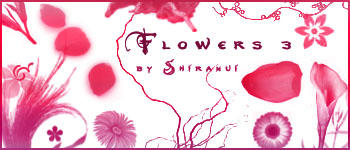 Flower Brush 3 by Shiranui