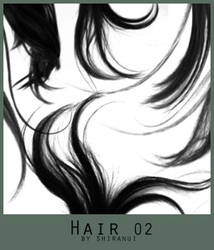 Hair 02 by Shiranui