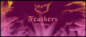 Feathers for pihjin
