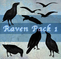 Raven Pack 1