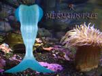 A Mermaids Tale