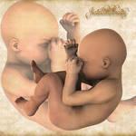 Human Infant 0r Fetus