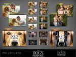 A Dog's Purpose (2017) Movie Folder Icon Pack