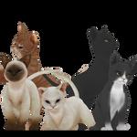 [MMD] Kitten [Download Stuff]
