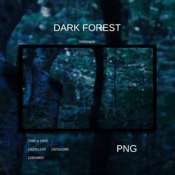 Dark Forest by Momez