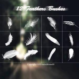 +12 Feathers Brushes.
