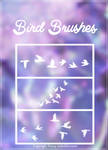 +Bird Brushes