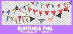 + Buntings Png