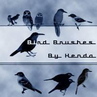 Bird brushes by Henda-Stock