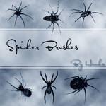 Spider Brushes