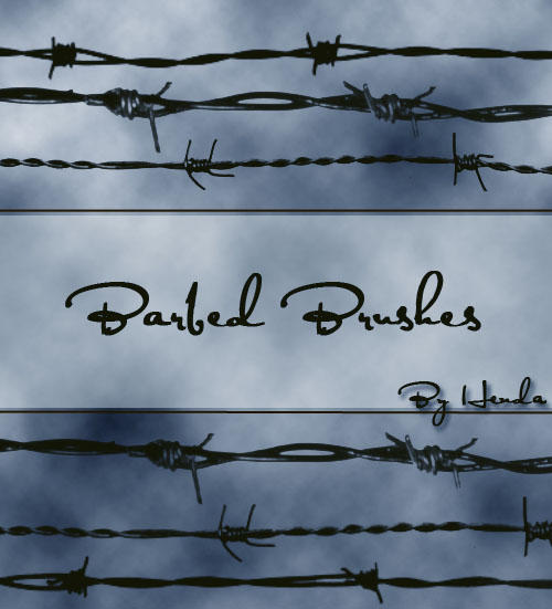 Barbed Brushes by Henda-Stock