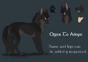 OTA Adopt [CLOSED]
