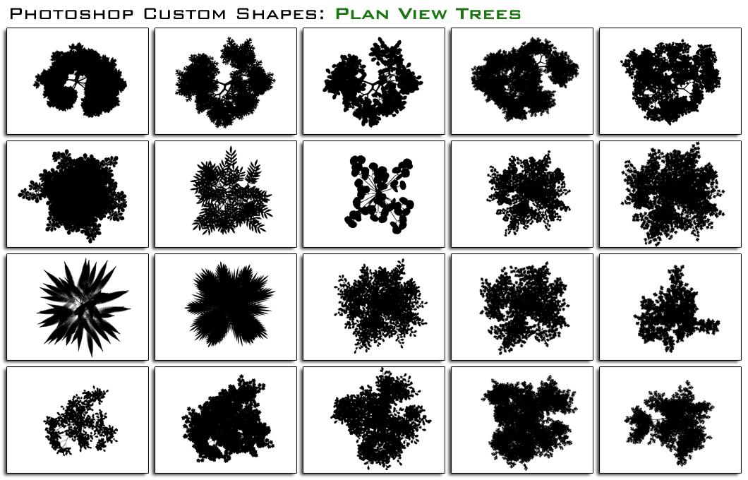 Plan Trees