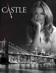Castle Moving Poster_Kate by malshania