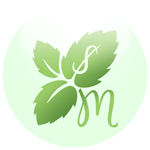 Mint.com SSB Icon by thelastmiracle