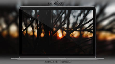 Still by gieffe22