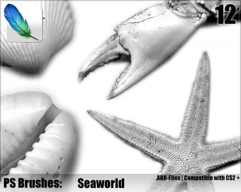 Seaworld Brushes