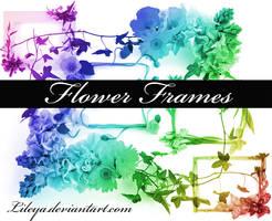 Flower Frame brushes imagepack