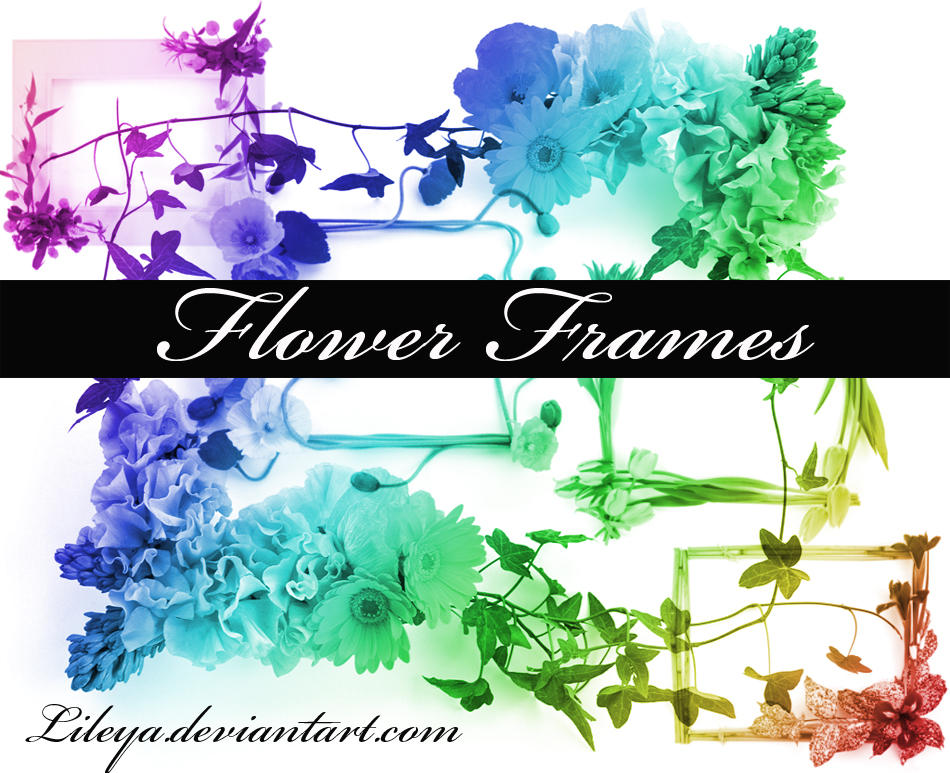 Flower Frames by Lileya on DeviantArt