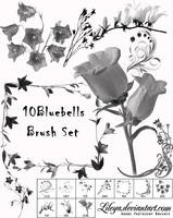 Bluebell Brush Set by Lileya