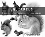 Squirrels PS brushes