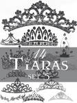 Tiaras brush set 3