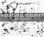 Wierd Floral Ornaments