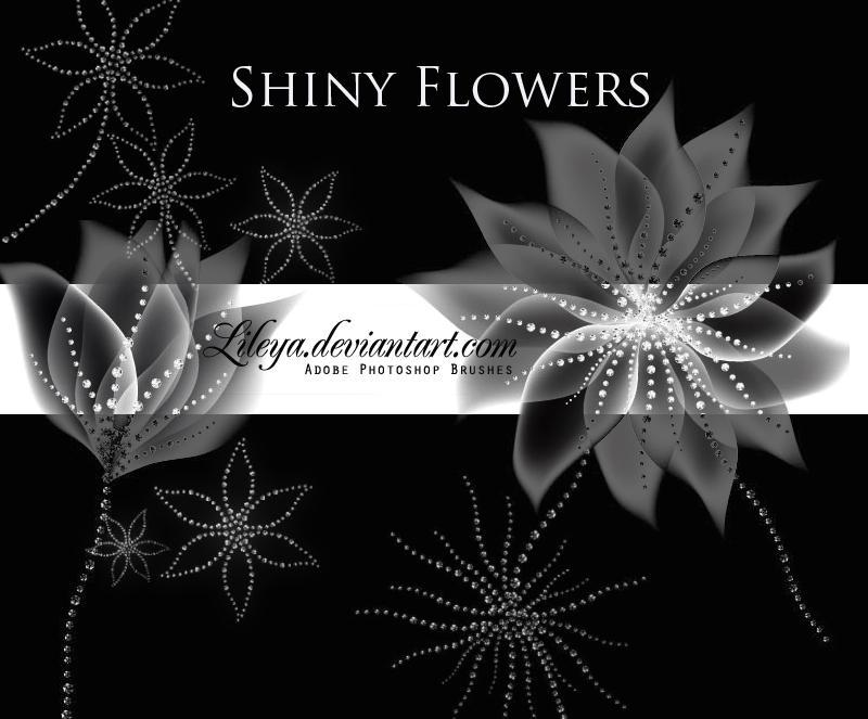 Shiny flowers by Lileya
