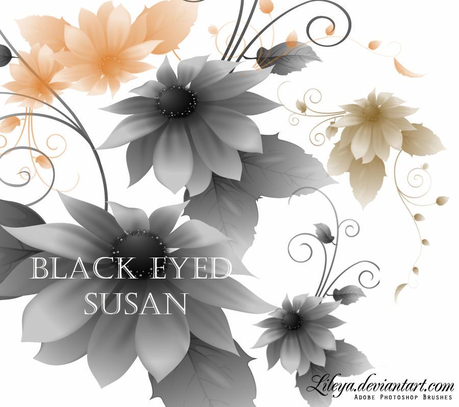 Black-eyed Susan flower by Lileya