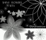 Shiny Flowers - set 2