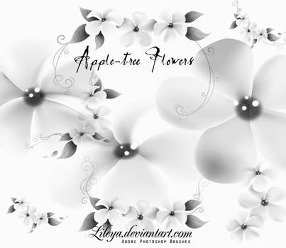 Apple-tree Flowers