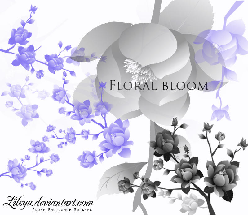Floral Bloom by Lileya