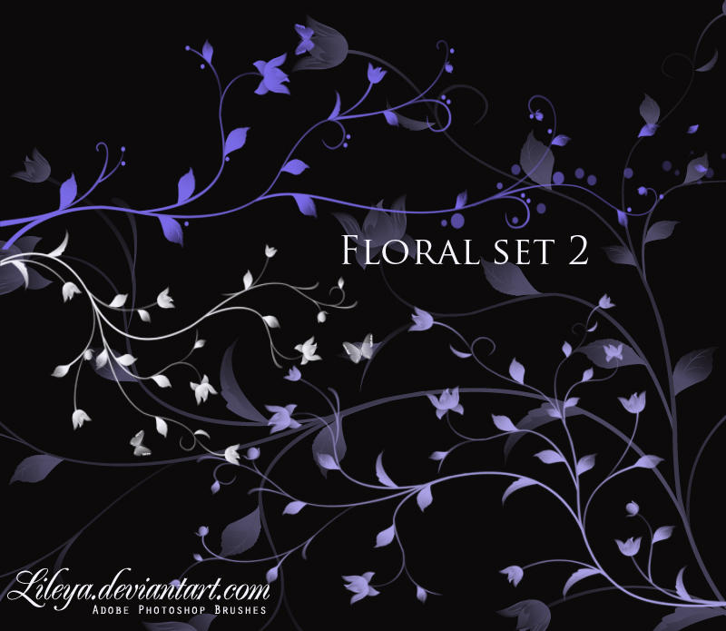 فرش فوتوشوب ناردة وجديدة 2010 Floral_brush_set_2_by_Lileya