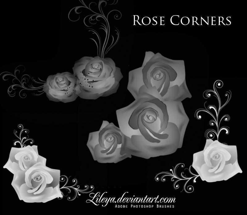 Rose Corners by Lileya