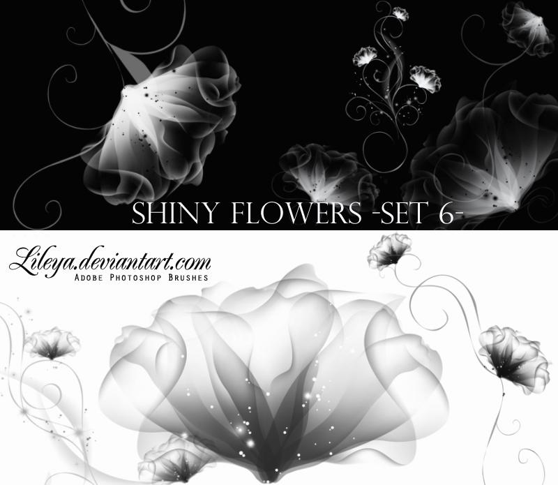 Shiny Flowers set 6