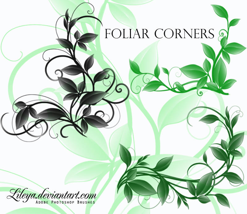 Foliar Corners by Lileya