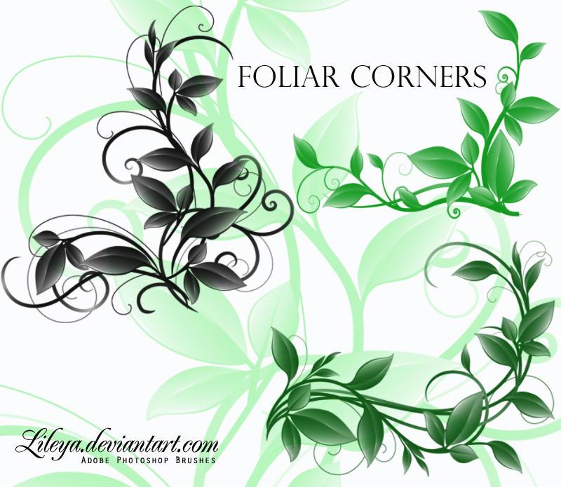 Foliar Corners by Lileya