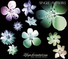 Single Flowers by Lileya