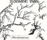 Blooming Trees