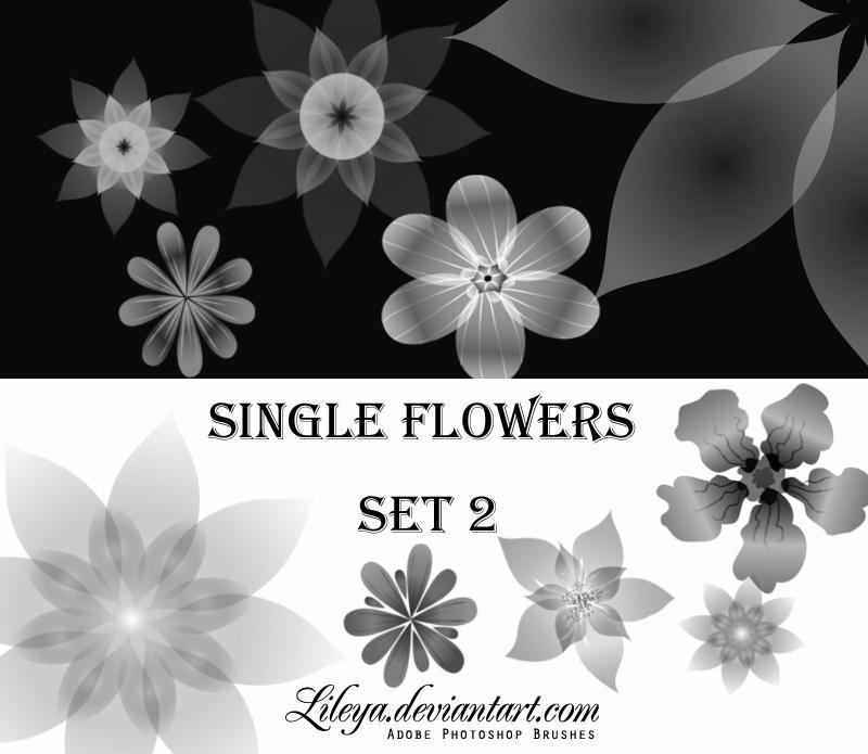 Single Flowers -set 2-